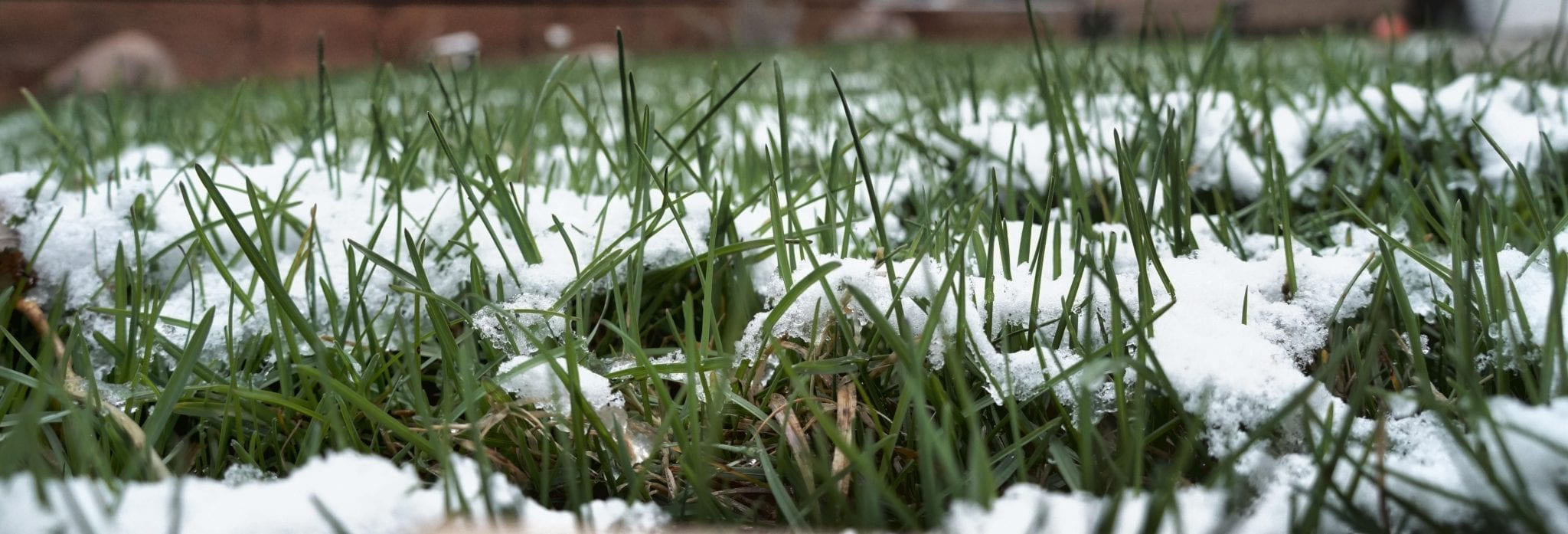 Inclement Weather Policy and Phone Number