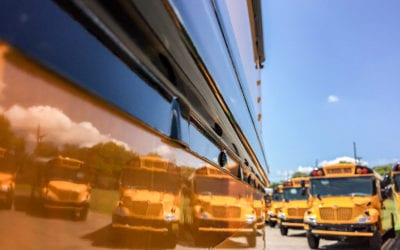 School Buses and Laws