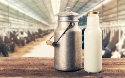 14th Run MPG Stats – the Milk Run