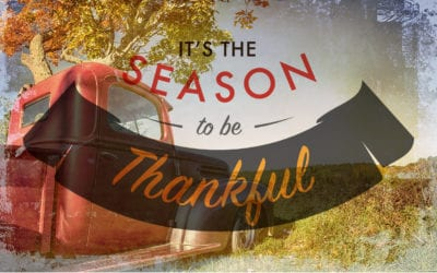 Hurry! Slow Down, Reflect and Give Thanks